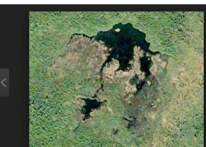 Longest beaver dam (over 2k feet) can be seen from space.